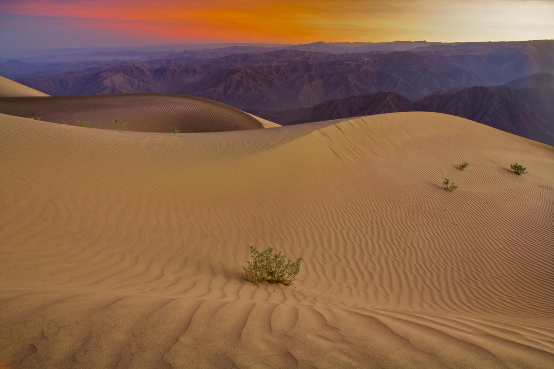 9. Sunrise Sand (PS).jpg