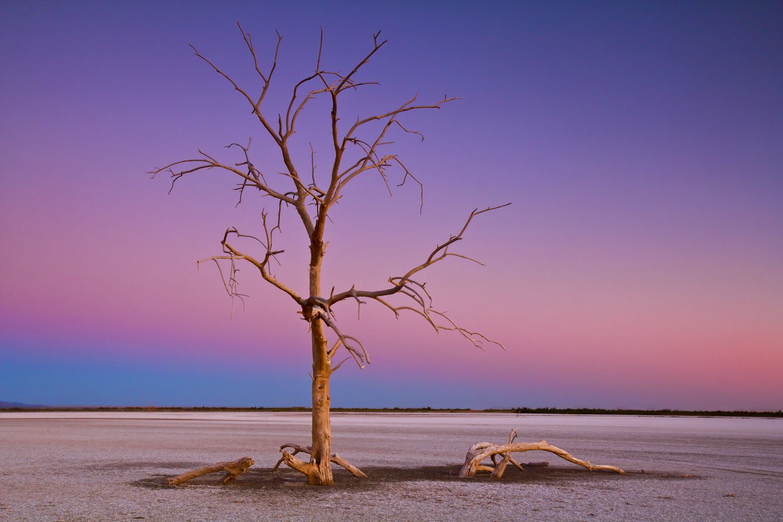 A Dried Salton Sea2.jpg