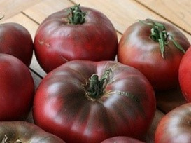 Cherokee Purple - A favorite among those who like a darker, more acidic tomato. Large heirloom, 72 days from transplant to harvest