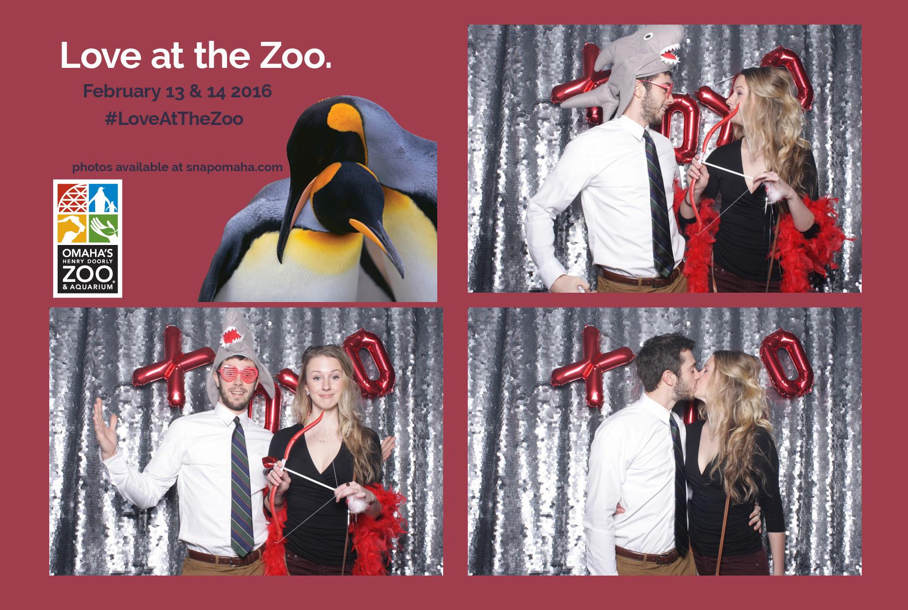 omaha zoo love at the zoo