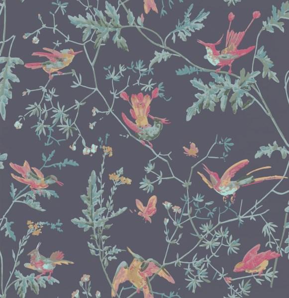hummingbirds_100-14068.jpg