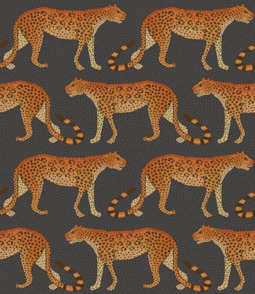 leopard_walk_109-2008.jpg