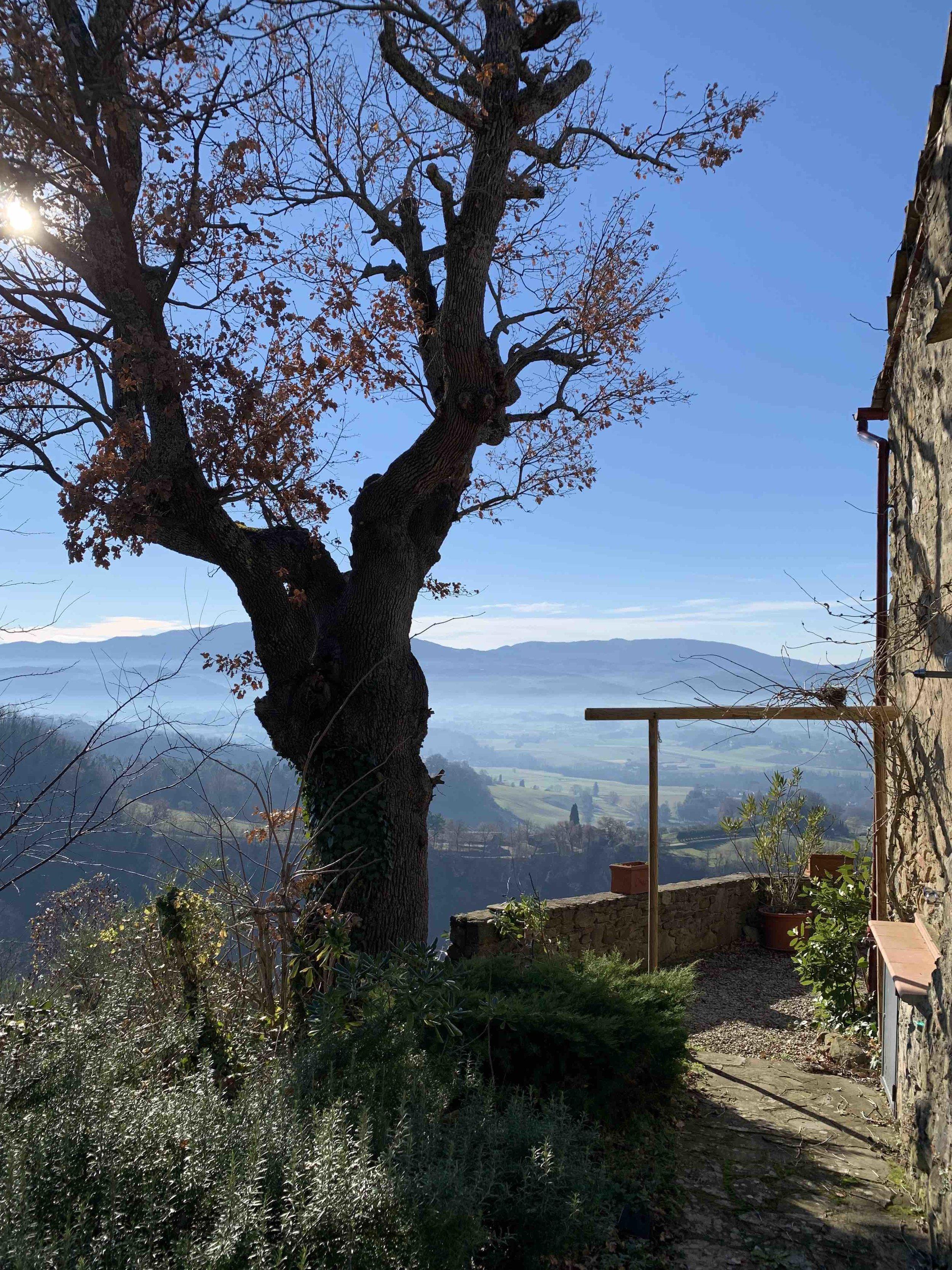 TRAVEL ITALIE TOSCANE THE NICE STUFF COLLECTOR VAKANTIE THEO-BERT POT ITALIA 3.jpg