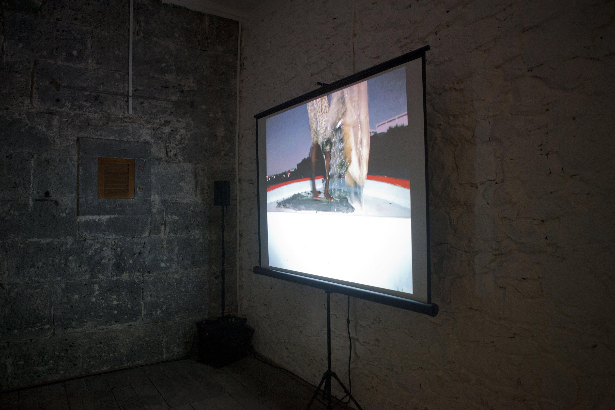 Diana Heise,Installation view,  Edge Effects, La Citadelle, Mauritius, 2016