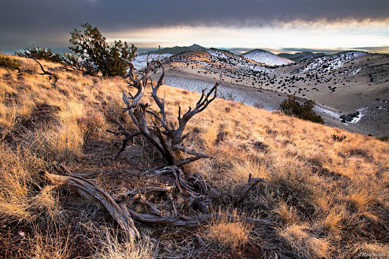 Northern Arizona Volcano Field