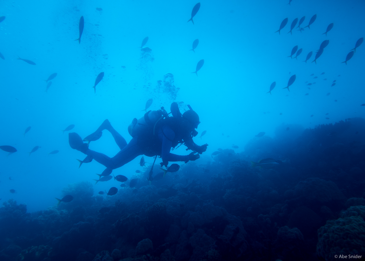 One of my fellow divers on the PADI Openwater Course.