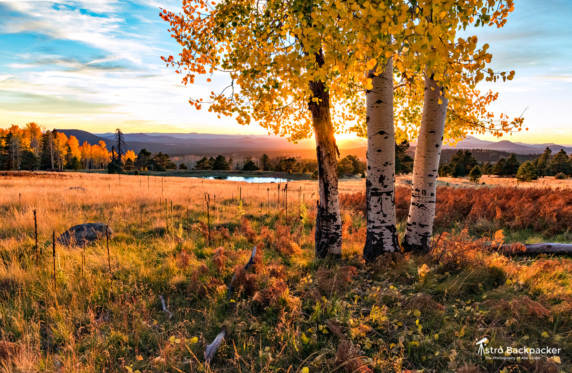 Autumn in the High Country