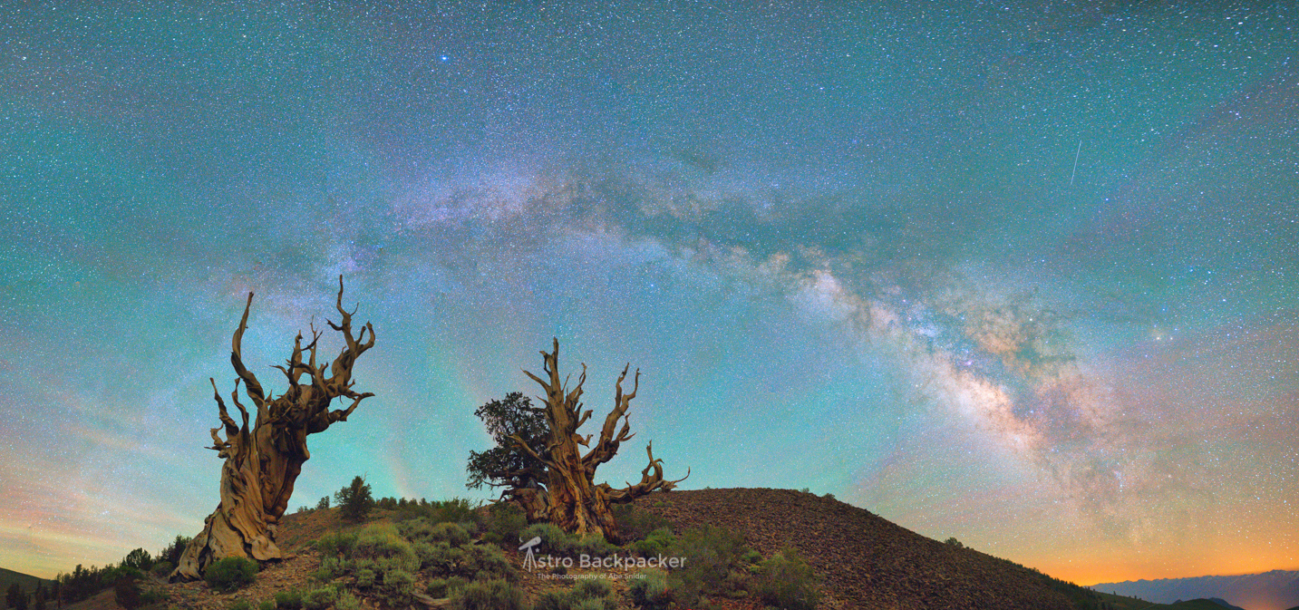 Color and Shadow/Highlight control made processing this panorama far easier than in Lightroom.   Ancient Bristlecone Pine Forest, California - USA