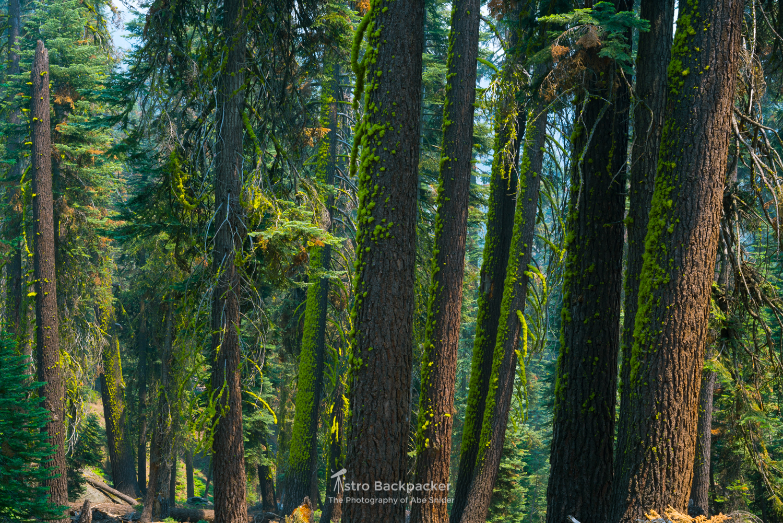 Yosemite National Park under extreme smoke.