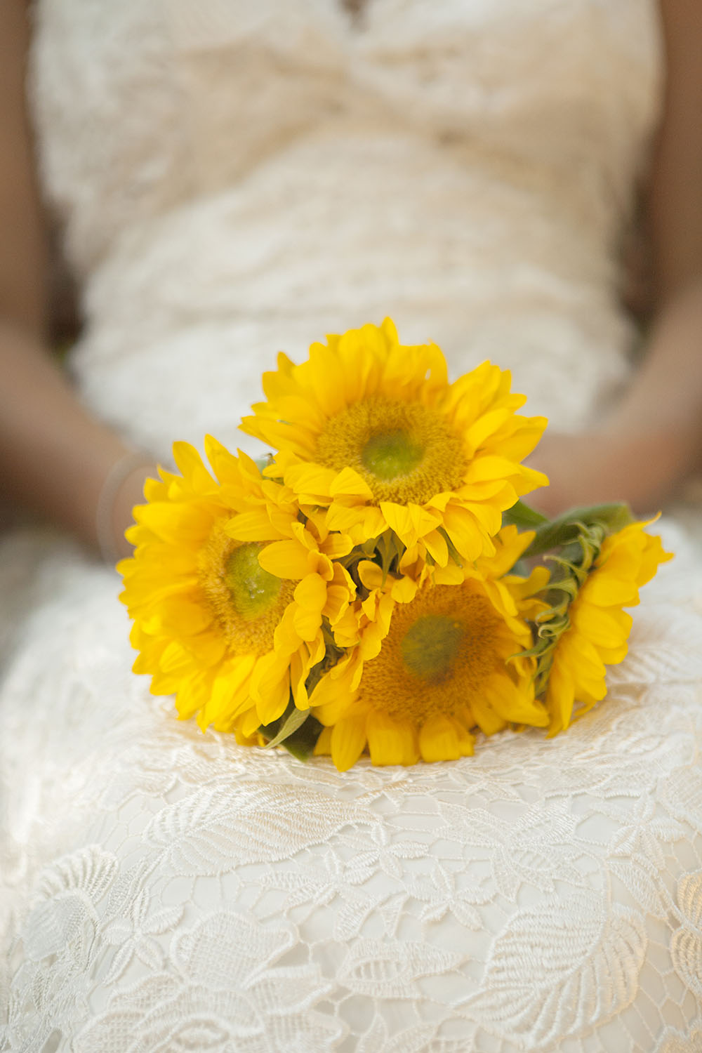 On a sultry July evening, Angela and Danny celebrated their marriage with a reception held at the beautiful  Orcutt Ranch  in West Hills. The theme was sunflowers, a wonderful and joyful motif for a mid summer day! The couple even had edible custom heart and sunflower toppers on their cupcakes and cutting cake by Adrienne of  Kreative Kakes 4U . Co-ordination and decorations were done by Christine at  Lalonde Events . The gorgeous couple had married at the courthouse the day before and wanted a simple and intimate celebration with family and friends.