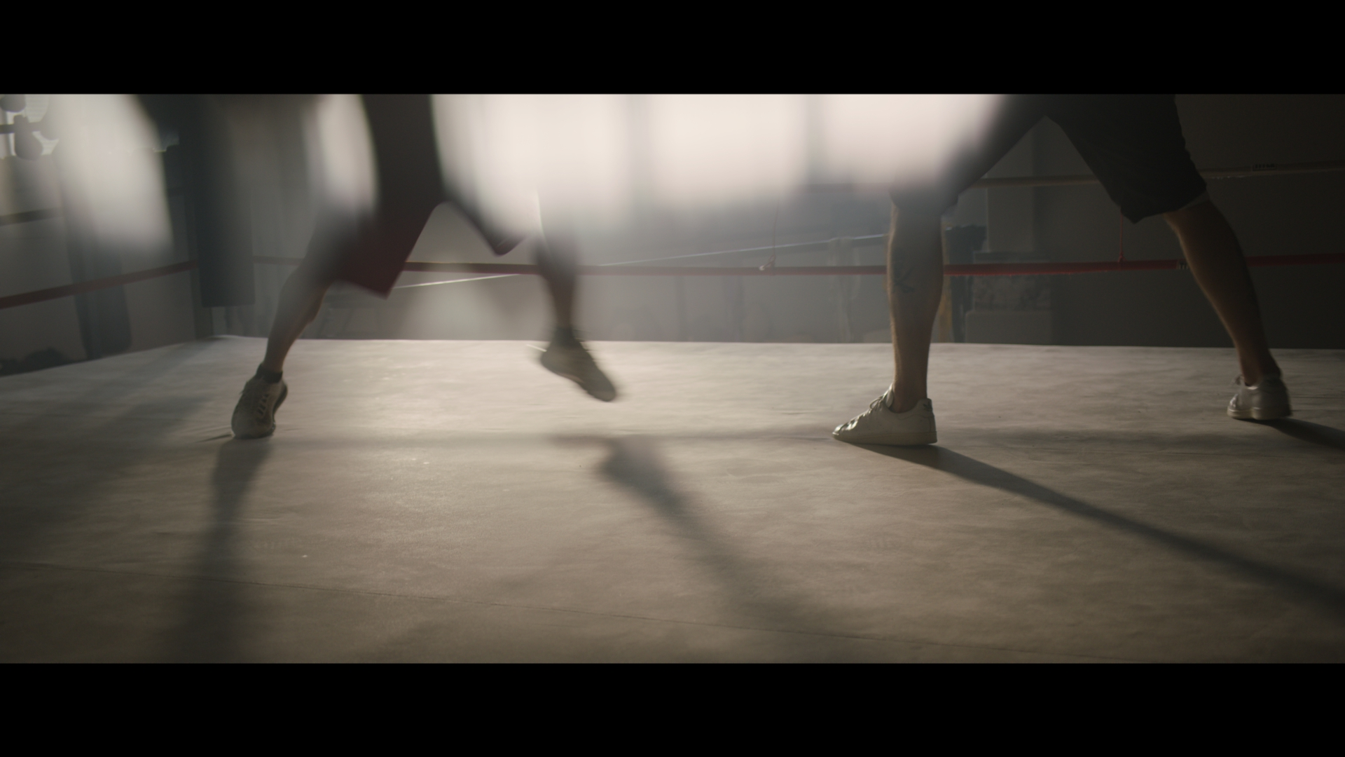 Boxing_1.11.1.jpg