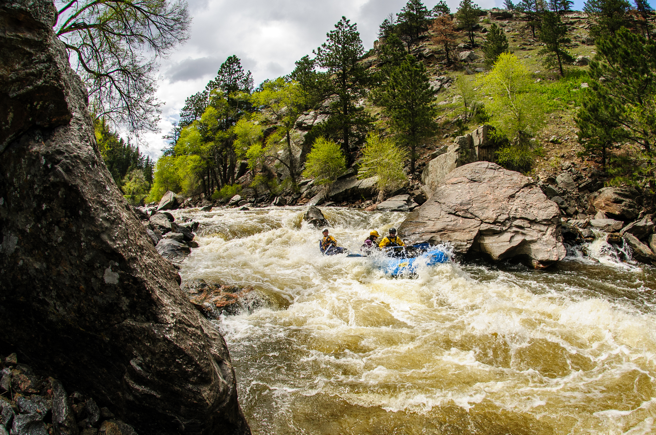 Whitewater rafting on the Poudre (photo courtesy of our friends at Whitewater Mountain Descents, Ft Collins, CO)