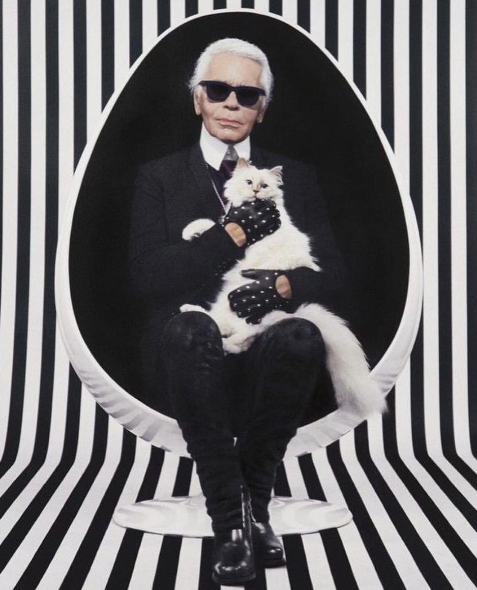 Lagerfeld and Choupette
