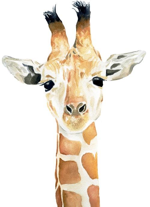 Giraffe+Final.jpg