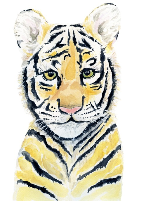 Tiger+Image.jpg