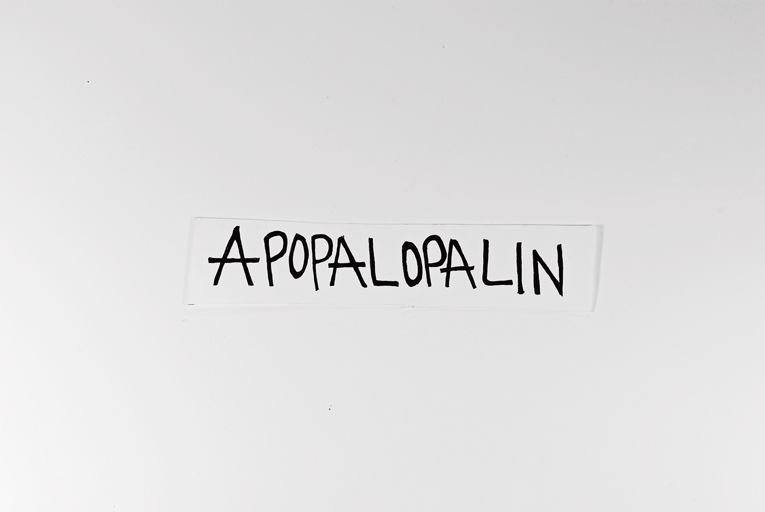 disguised as me album art apopalopalin