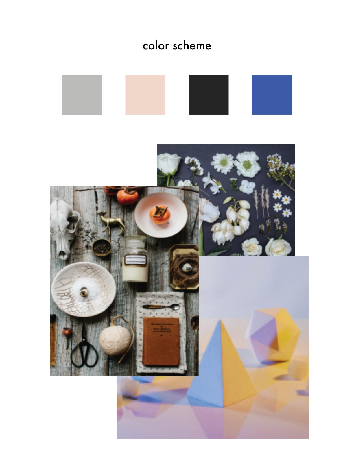the painted nest studio color scheme