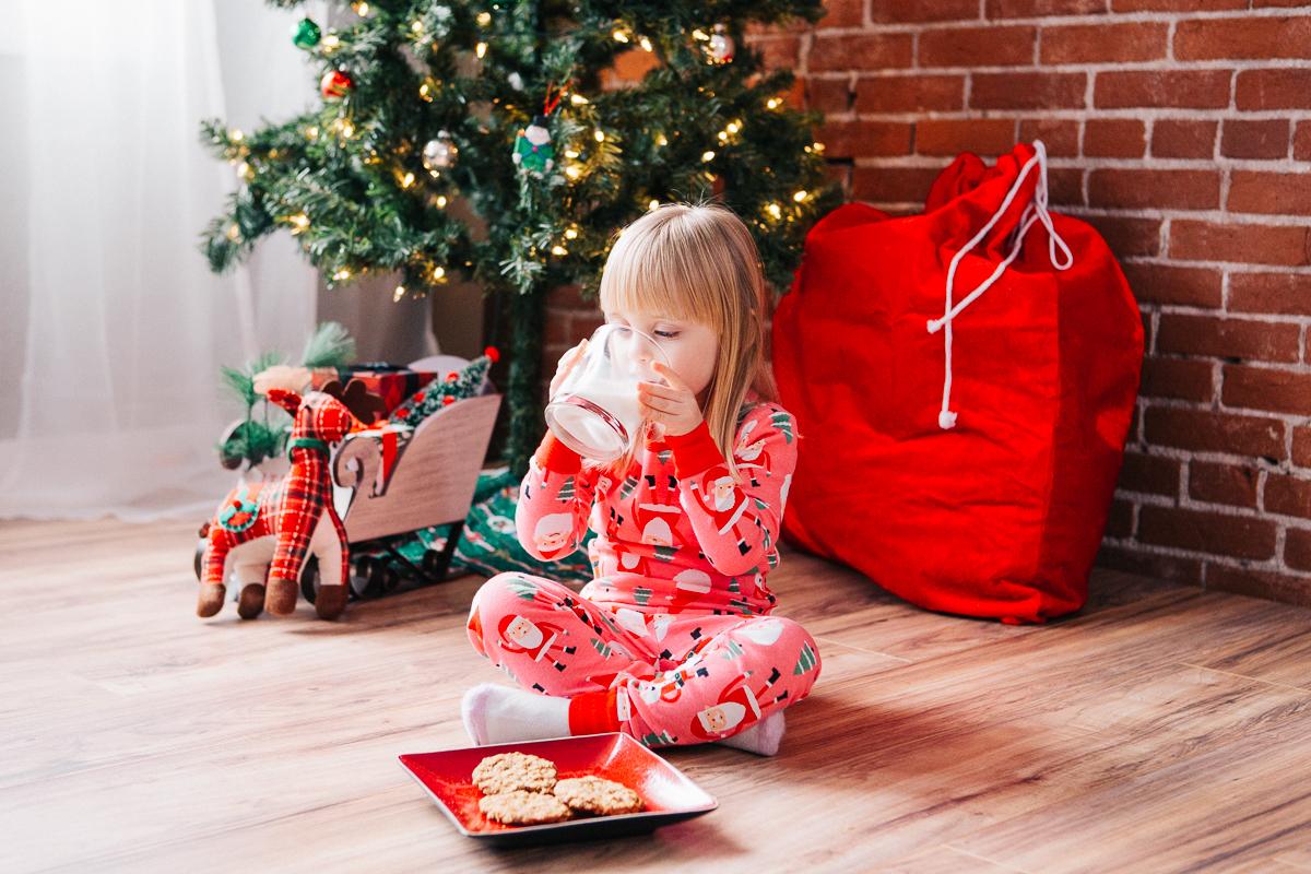 Evie Christmas_2016-11-13-17.jpg