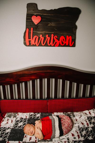 Harrison NB-5.jpg