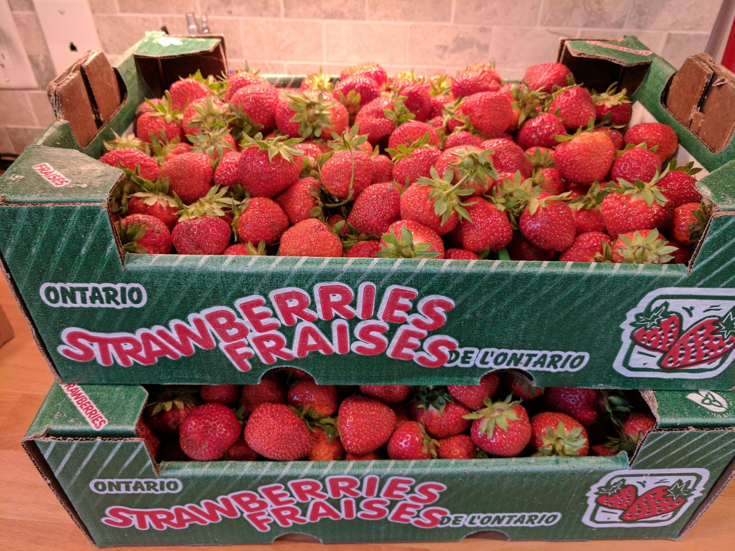 A berry nice haul...