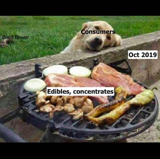 Caption: Is it 2019 yet?   Image via Instagram