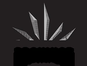 Province Brands Logo.png