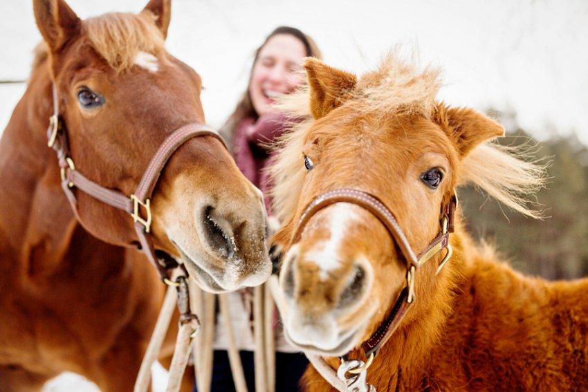 Horse-Photography-Saratoga-Springs-NY08.jpg