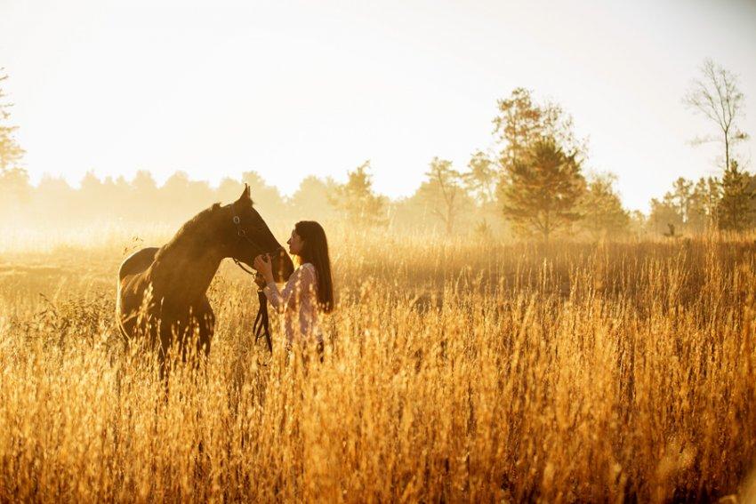 Equine-photographer-saratoga-ny16.jpg