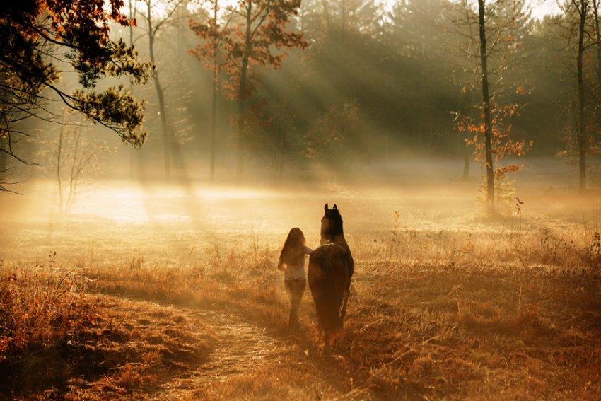 Equine-photographer-saratoga-ny23.jpg