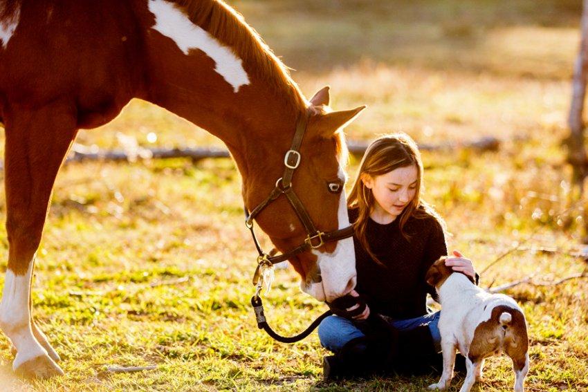 Equine-photographer-saratoga-ny28.jpg