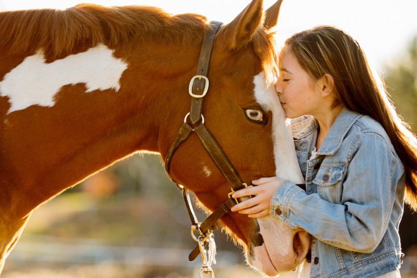 Equine-photographer-saratoga-ny35.jpg
