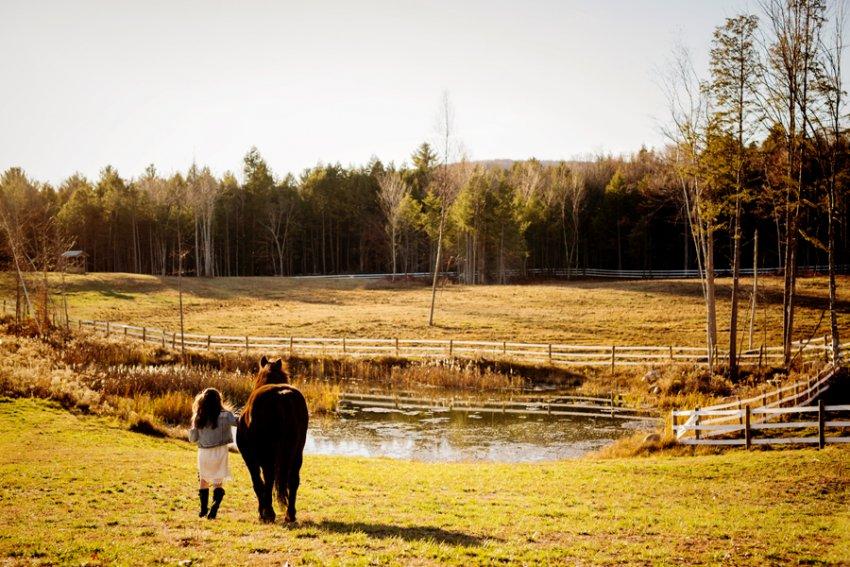 Equine-photographer-saratoga-ny42.jpg