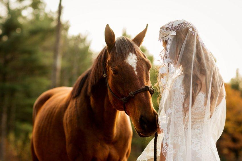 Tracey-Buyce-Photography-wedding-photos64.jpg