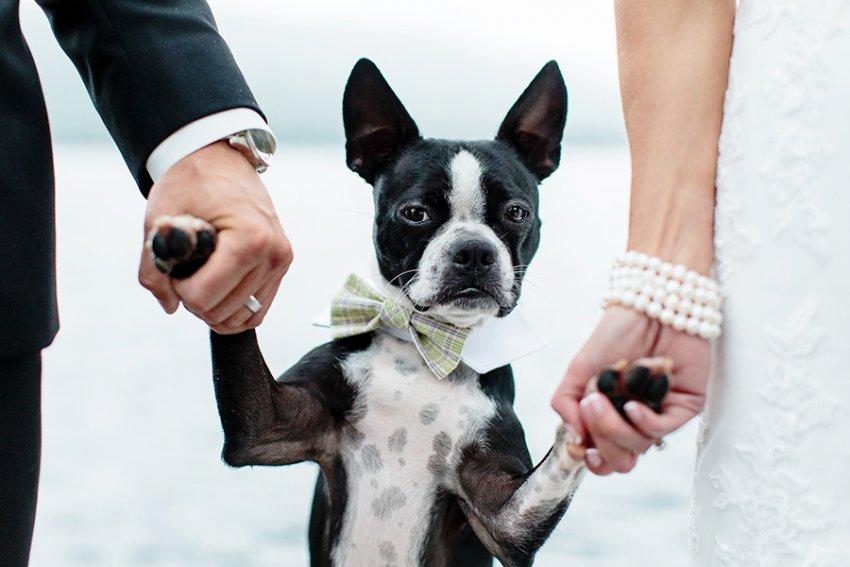 Saratoga-NY-wedding-photographer58.jpg