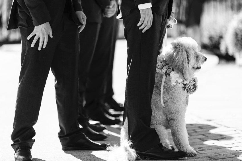 Saratoga-NY-wedding-photographer70.jpg