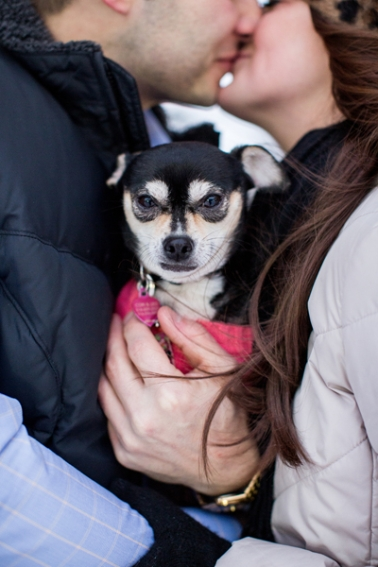saratoga-ny-engagement-photos-with-dog-photographer104.jpg