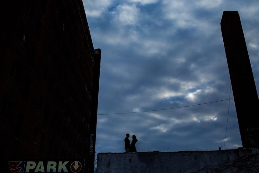 saratoga-ny-engagement-photos-with-dog-photographer113.jpg