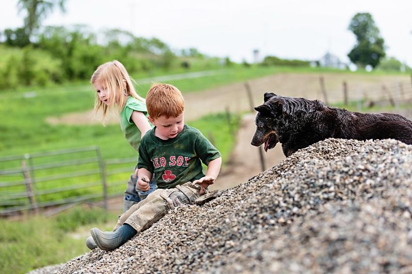 tracey-buyce-photography-farms05.jpg