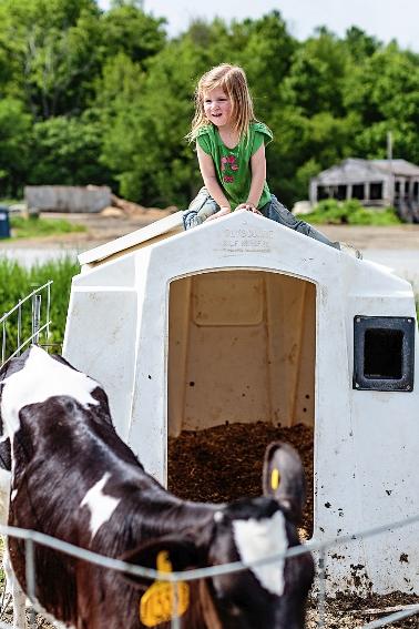 tracey-buyce-photography-farms22.jpg