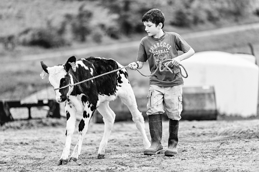 tracey-buyce-photography-farms30.jpg