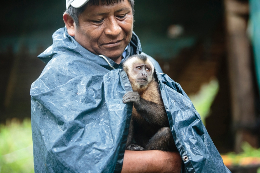 tracey-buyce-animal-photographer-monkeys-bolivia186.jpg