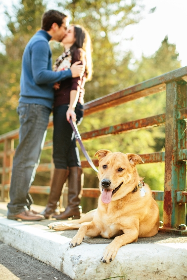 saratoga-ny-engagement-photos167.jpg