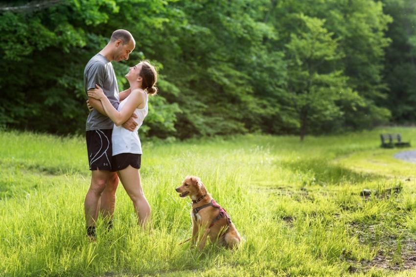 tracey-buyce-saratoga-dog-photographer21.jpg