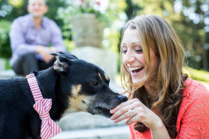 tracey-buyce-saratoga-ny-engagement-photos-dog-horse082.jpg