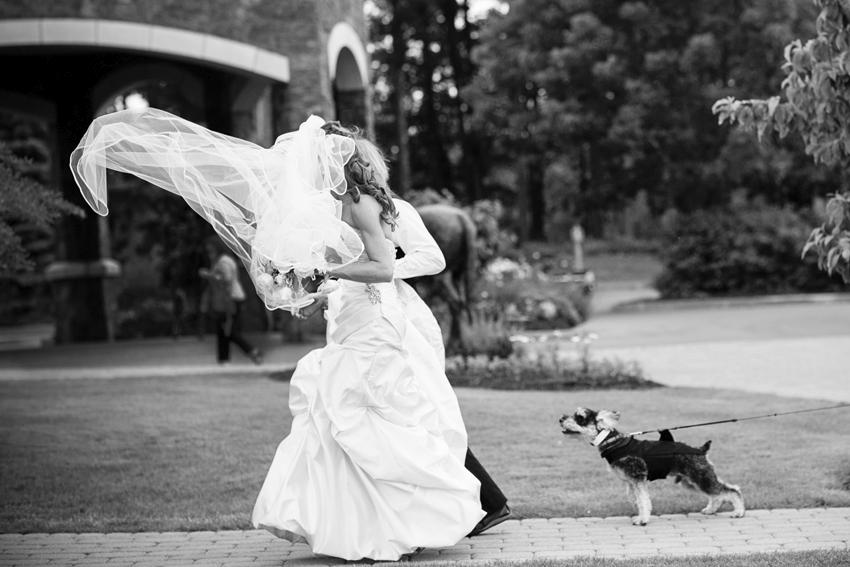 saratoga-wedding-photographer23.jpg