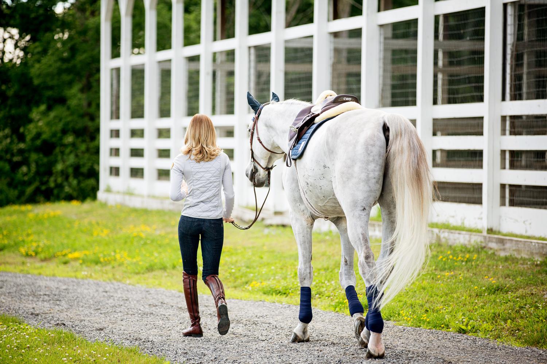 equestrian horse photography saratoga ny28.jpg