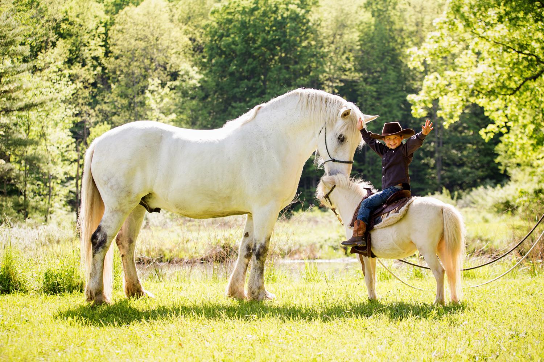 horse photography saratoga ny19.jpg