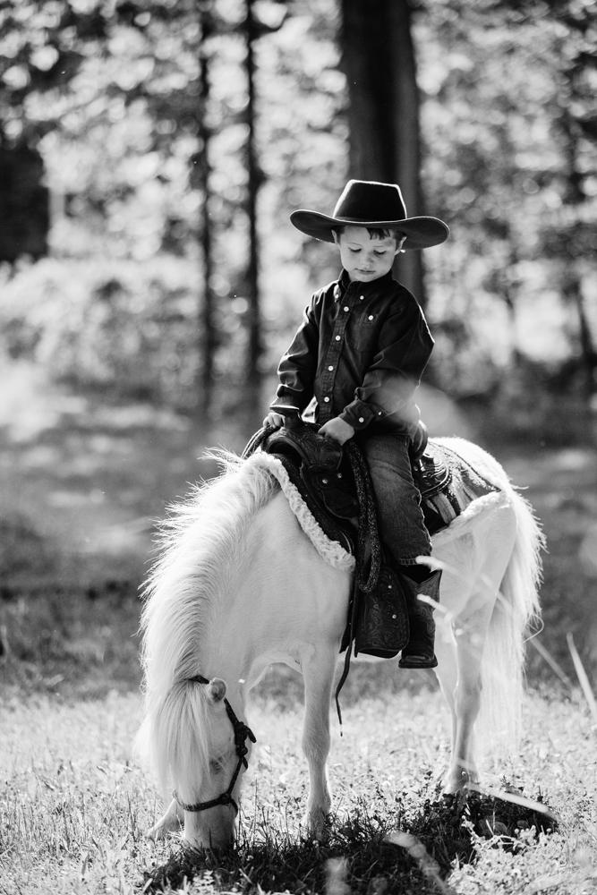 horse photography saratoga ny25.jpg