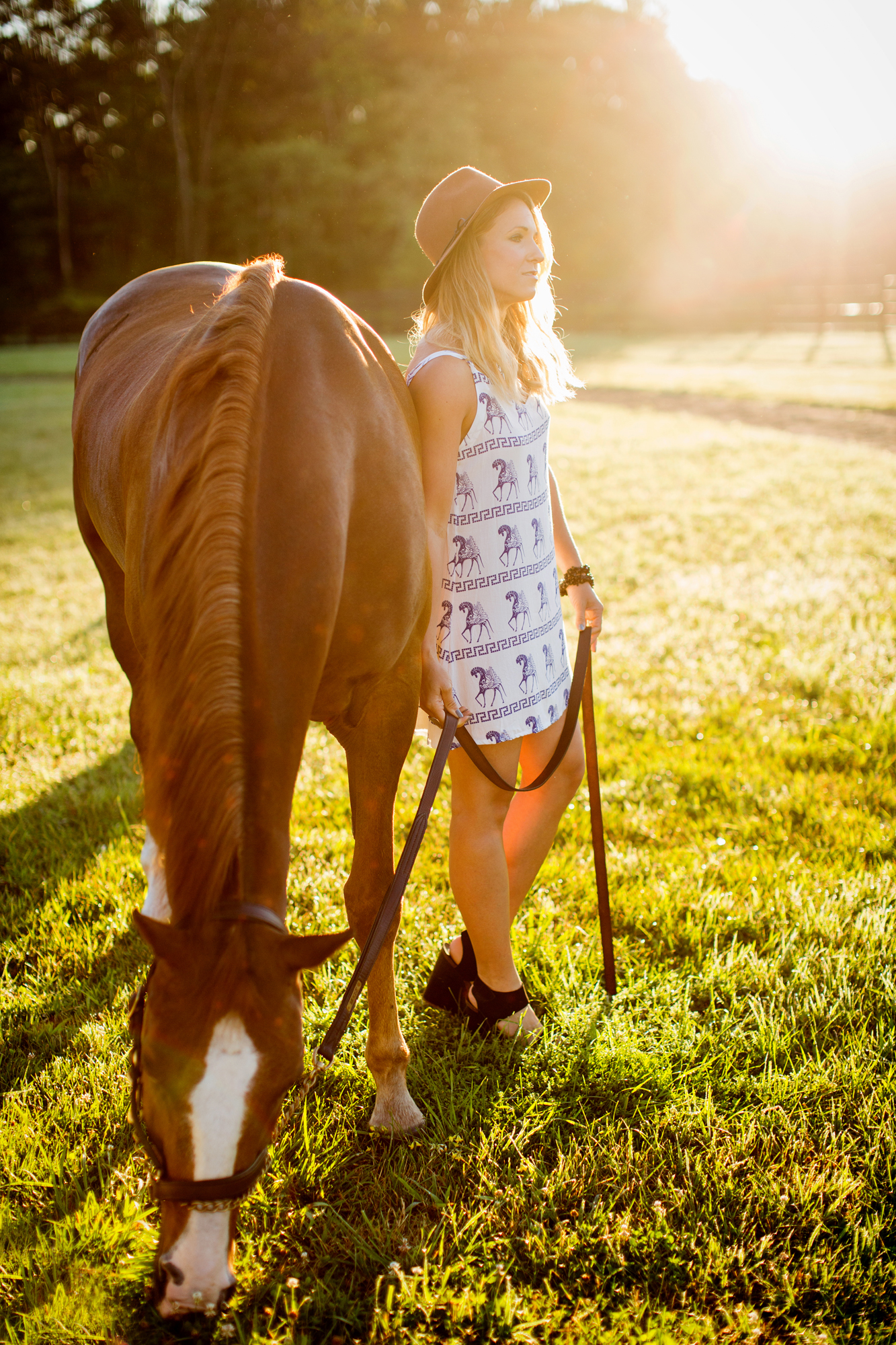 Tracey Buyce Horse Photography011.jpg