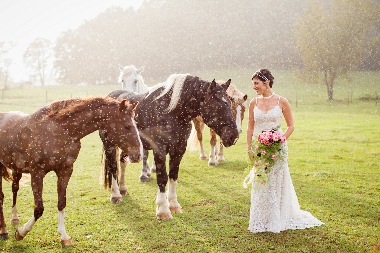 wedding horses saratoga ny55.jpg
